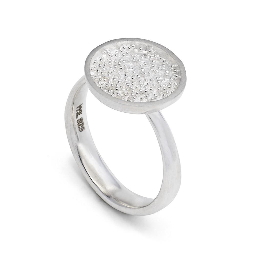 Sparkling Nest Silver